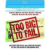 Too Big to Fail (Blu-ray/DVD Combo + Digital Copy)
