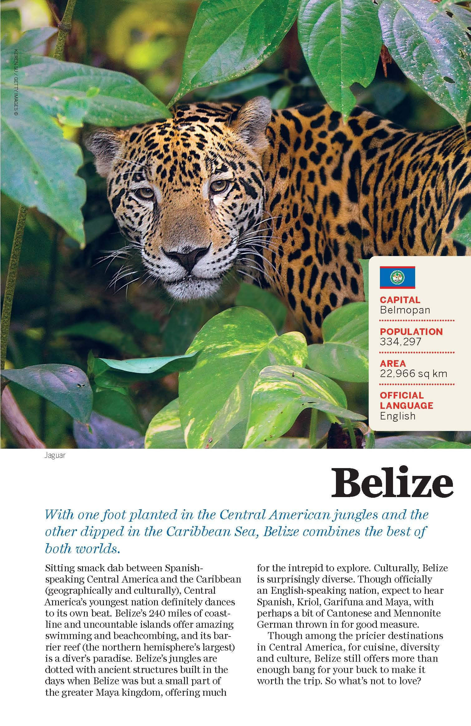 Lonely Planet The World: A Traveller's Guide To The Planet (travel Guide): Lonely  Planet: 9781743600658: Amazon: Books