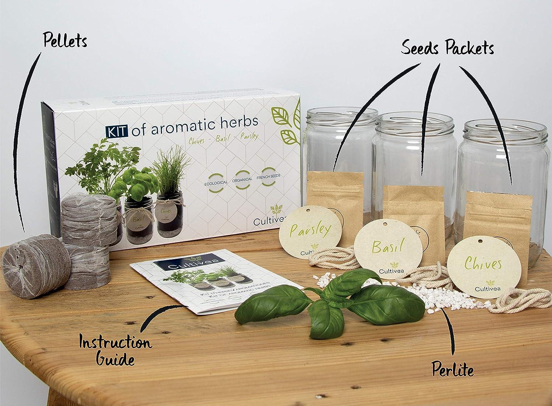 Cultivea Kit completo de hierbas - Cultive propias hierbas ...