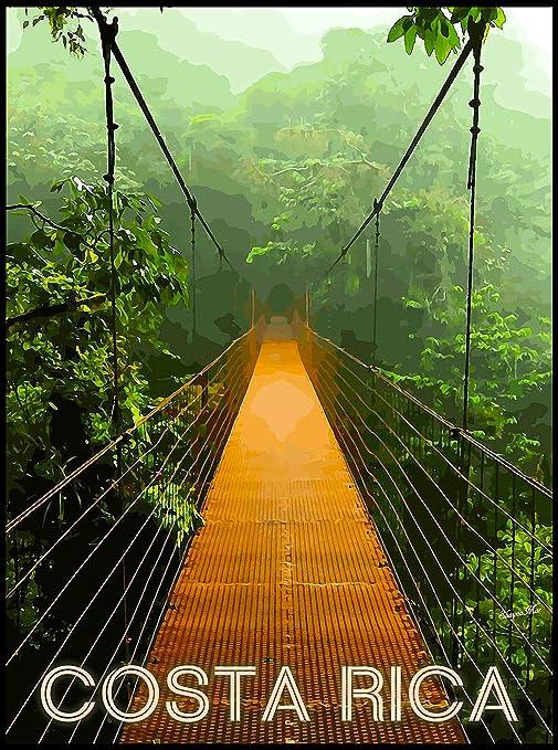 Amazon.com: Playa Rainforest Expansión puente de Costa Rica ...