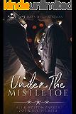 Under the Mistletoe: A Sexy Bad Boy Holiday Novel (The Parker's 12 Days of Christmas)