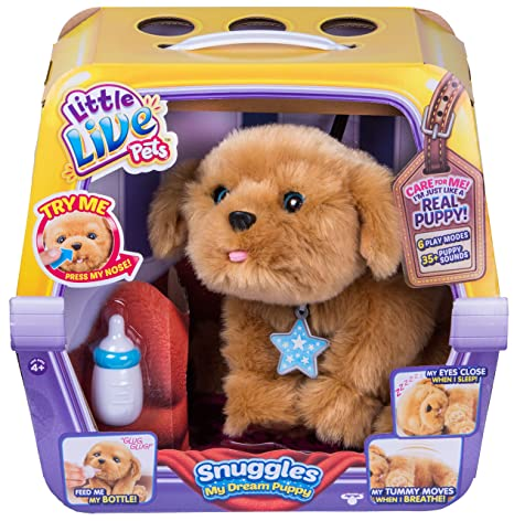 toy pet dog