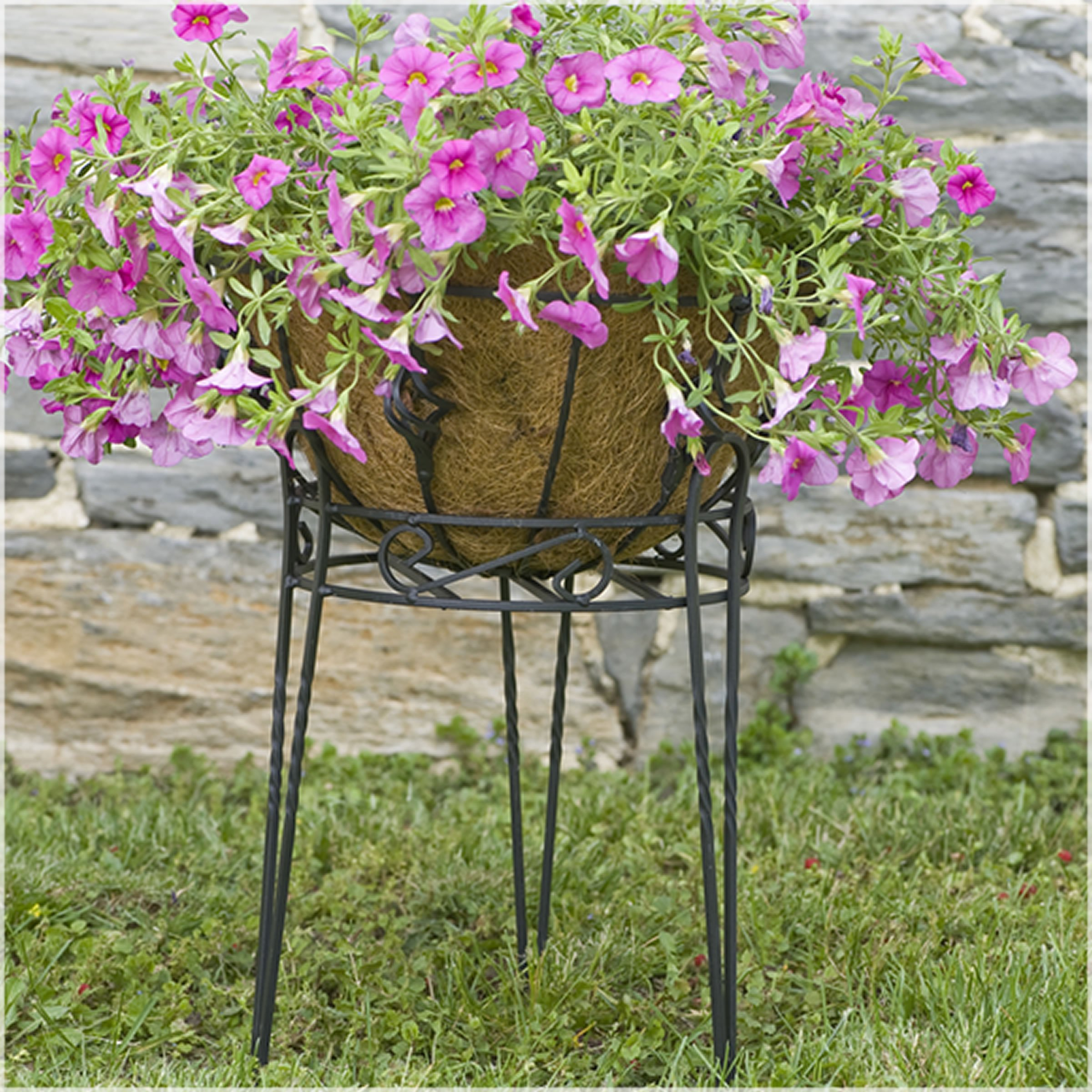 CobraCo Canterbury 15-Inch Black Scroll Top Plant Stand SCBPS1015-B by CobraCo