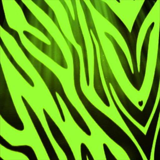 Green Zebra Print Amazon.com: Green Zebr...