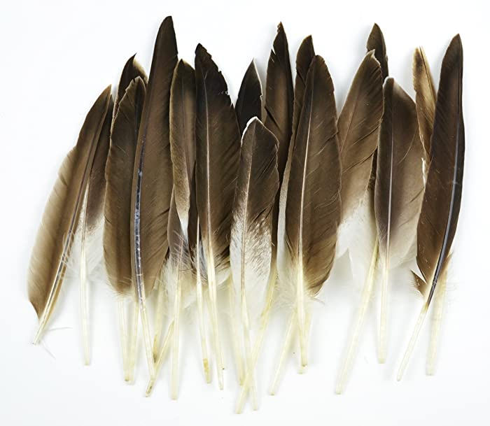 Top 9 Touch Of Nature 22 Piece Duck Wing Quills