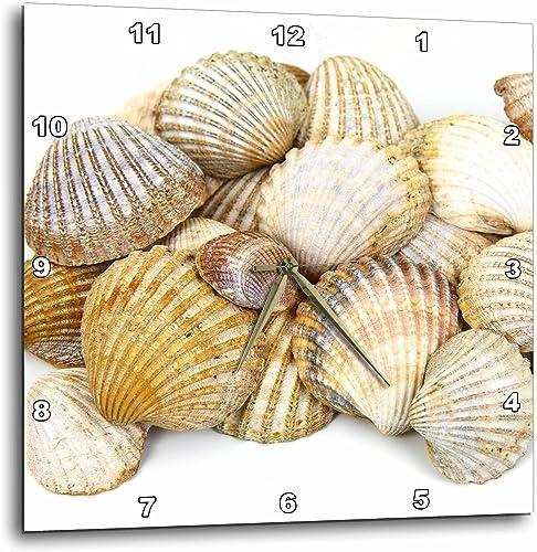 3dRose DPP_50550_3 Sea Shells by The Sea Shore Summer Beach Theme Wall Clock, 15 by 15-Inch
