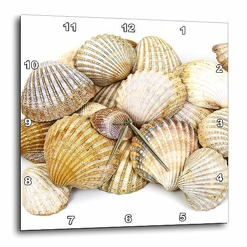 3dRose DPP_50550_1 Sea Shells by The Sea Shore Summer Beach Theme Wall Clock, 10 by 10-Inch