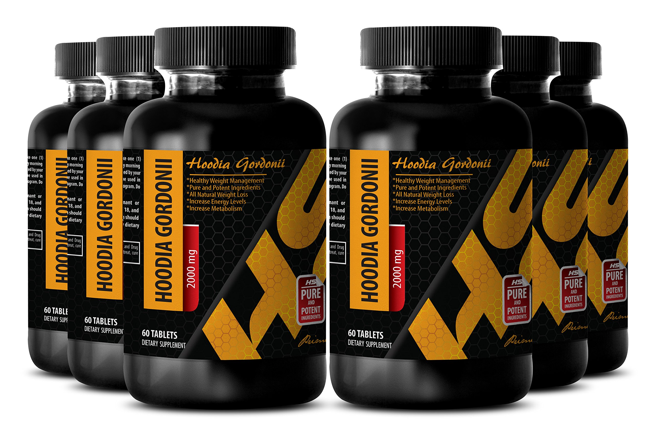 Metabolism fat burner - PURE HOODIA GORDONII EXTRACT 2000 Mg - Suppressant powder - 6 Bottle 360 Tablets