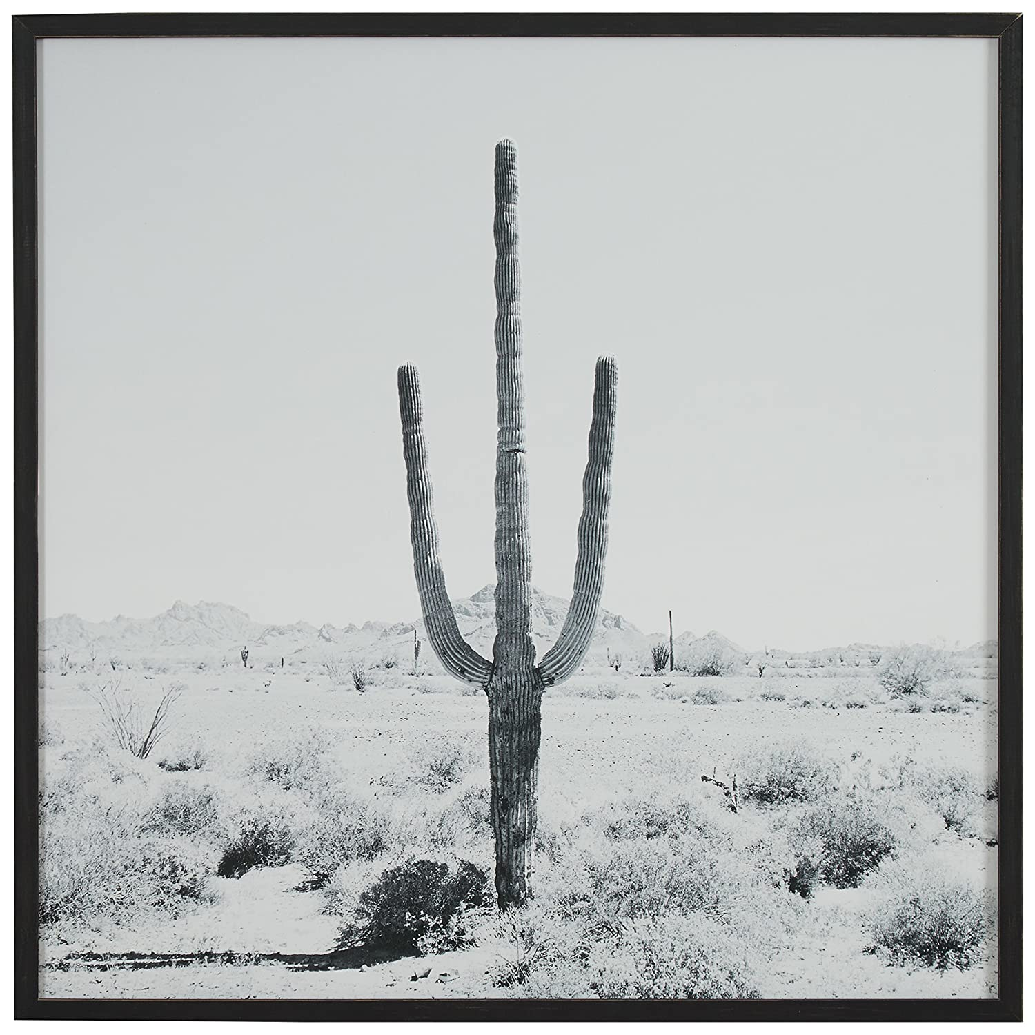 Amazon com modern black and white desert cactus photo on wood black frame 20 x 20 posters prints