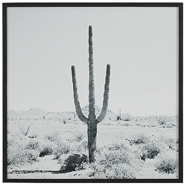 Modern Black and White Desert Cactus Photo on Wood, Black Frame, 20  x 20