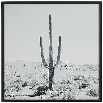 Modern black and white desert cactus photo on wood black frame 12 x