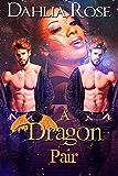 A Dragon Pair (The Paladin Dragons Book 10)
