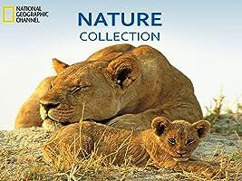 Nature Collection  Season 1
