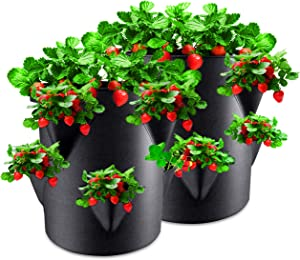 Rouffiel Strawberry Planting Bags, 2 Pack 10 Gallon Planting Pots with Velcro Window and Handle for Indoor & Outdoor Strawberry/Plant Containers