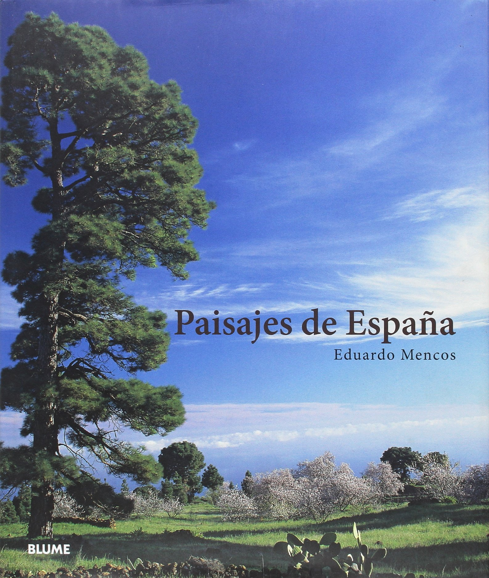 Paisajes de España En claroscuro: Amazon.es: Mencos, Eduardo: Libros