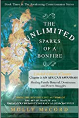 The Unlimited Sparks of a Bonfire eChapter 3: Healing Family Betrayal, Dominance, and Power Struggles Kindle Edition