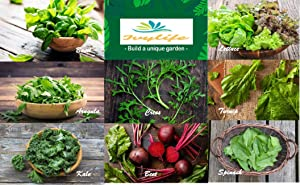 Set of 8 Assorted Organic Vegetable Seeds & Herb Seeds 8 Varieties Create a Deluxe Garden All Seeds are Heirloom, 100% Non-GMO Seeds Luxurious Kitchen Leafy Salad Organic Seeds
