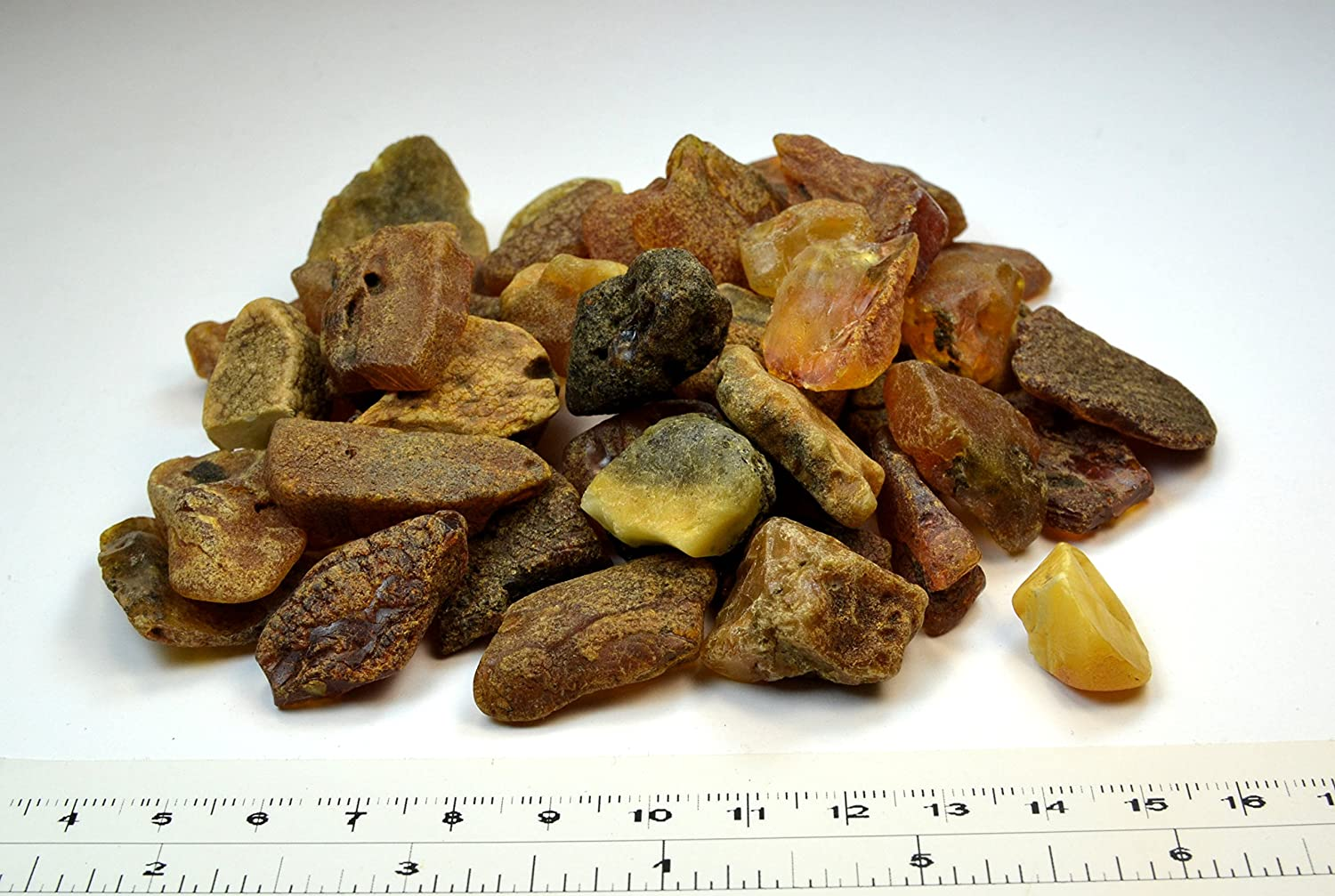 Amber Culture Raw Amber Stones Baltic Amber Resin, Genuine and Natural. Random Lot (Size 0.03-0.09 Ounce | Amount: 3.52 Ounces) 4336815915