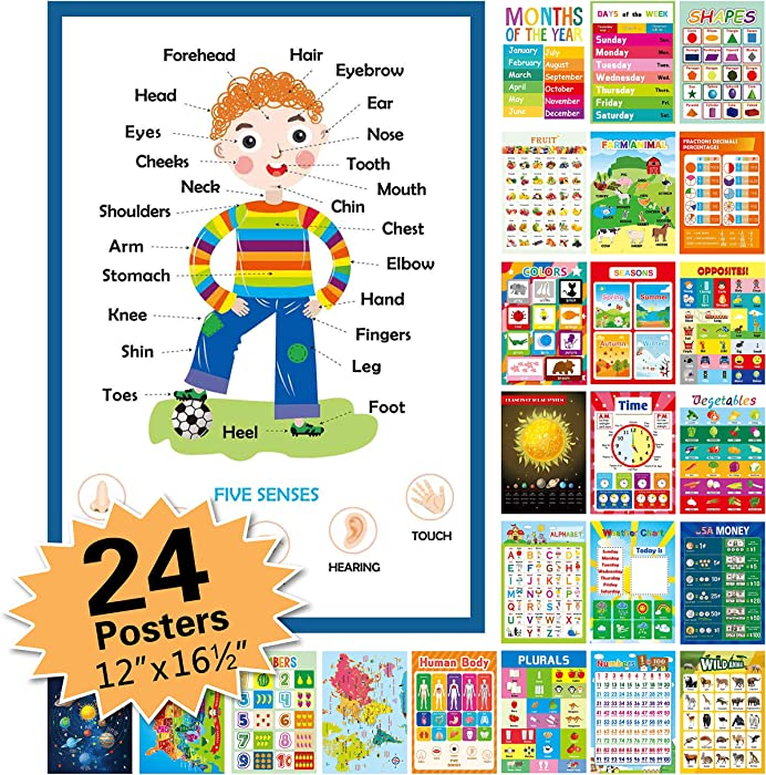 """24 Pack Educational Posters for Preschool,16.5"""" x 12"""" Classroom Decorations and Decor Earply Learning Chart for Nursery Homeschool Kindergarten Classroom"""