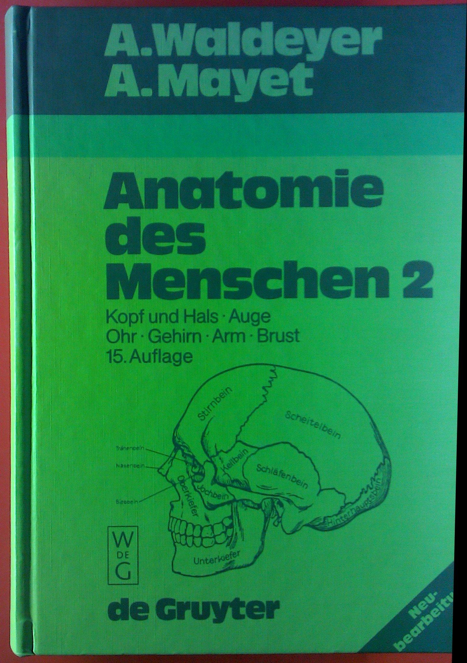 Anatomie des Menschen 2. Kopf und Hals - Auge - Ohr - Gehirn - Arm ...