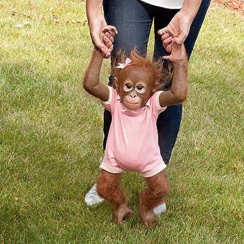 Amazon.com: Annabelle's Hugs Ashton Drake Baby Monkey Doll By Ina ...