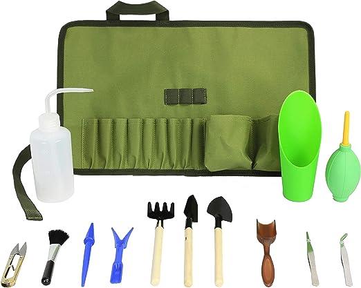 Kit de herramientas de jardinería con suculentas para organizar ...