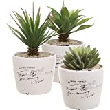 4 inch Rustic White Ceramic French Parisian Postcard Tabletop Succulent / Herb Planter Pots (Set of 3)