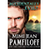 Accidentally...Evil? (An Accidentally Yours Novella, Book 3.5)