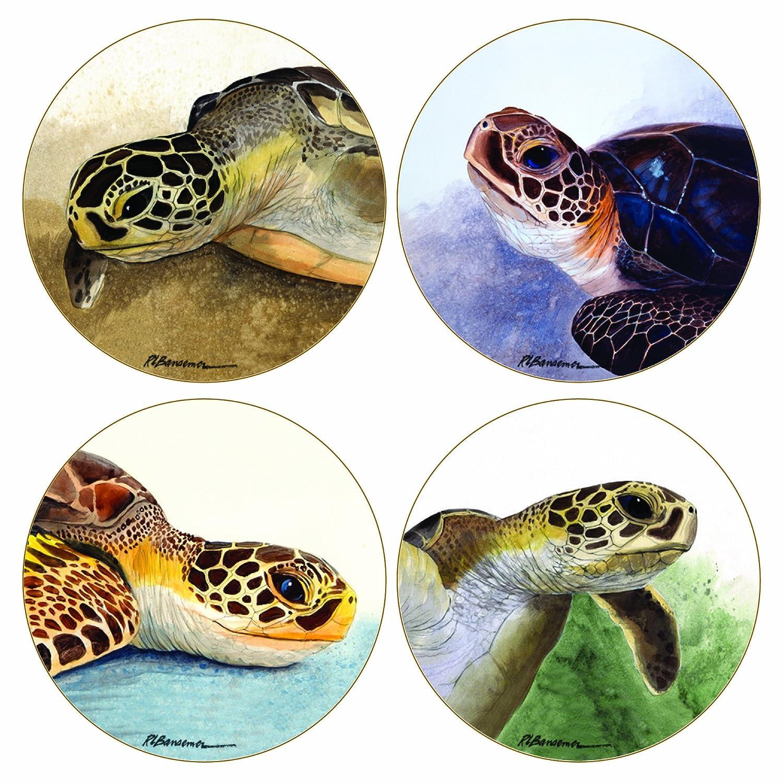 CoasterStone AS1815 Absorbent Coasters, Sea Turtles, 11cm, Set of 4   B004AQO6Q4