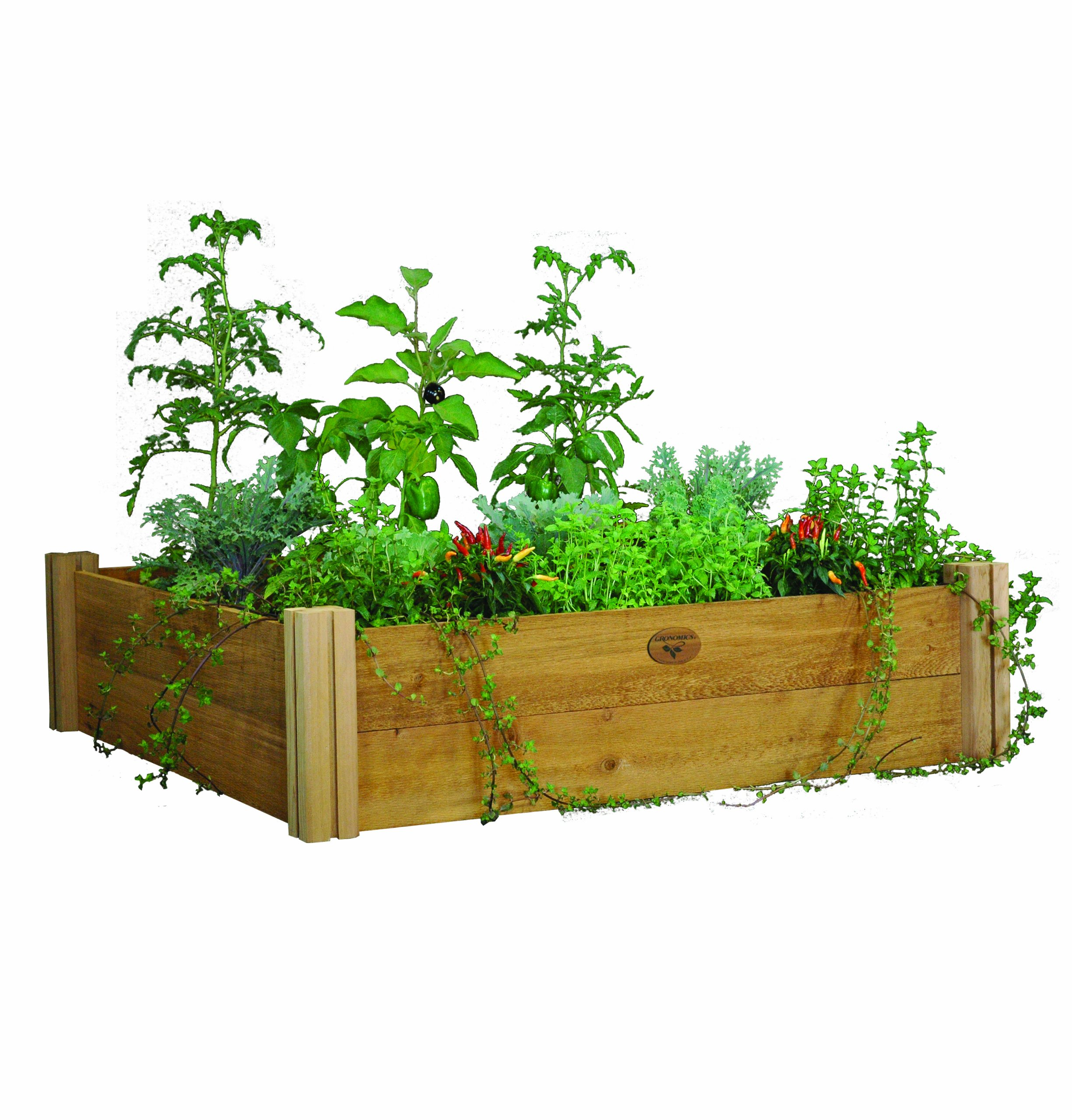 raiseds raised beds diy make series them tos a resist garden to how and now gronomics bed img whimsical grange rustic grow