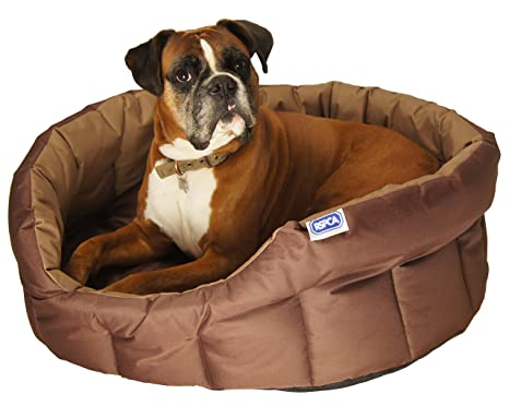 Lifemax RSPCA Extra rígida Perro Oval Cama, Grande