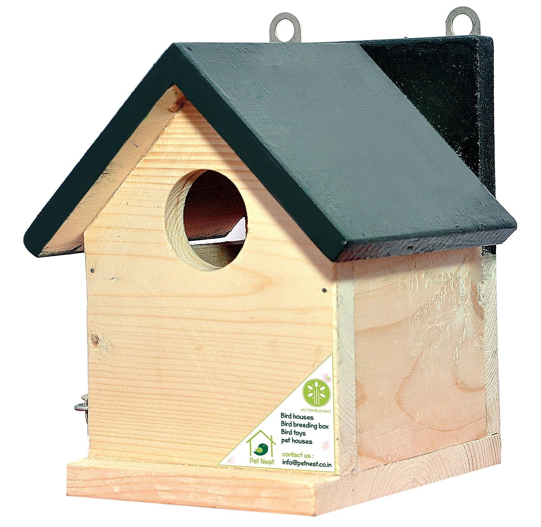 Bird houses house plan 2017 for Sparrow birdhouse plans