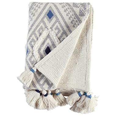 Stone & Beam Global Embroidered Throw