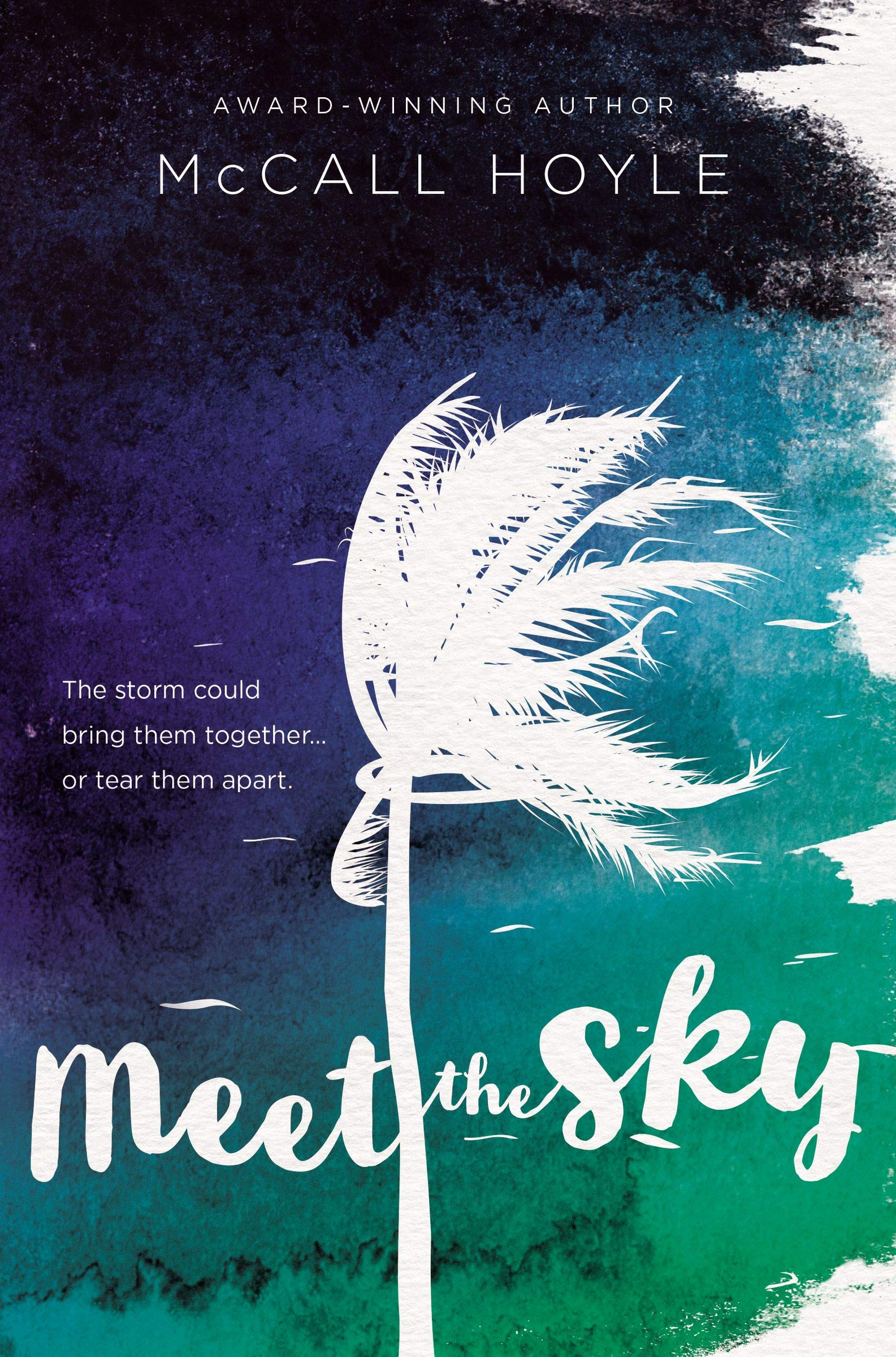 Image result for Meet the sky