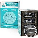 Fermentology Saur Stone Glass Weights – Pickling and Fermenting Weights - Set of 4 - Wide Mouth Mason Jar Fermentation