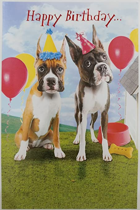 Amazon Happy Birthday From A Couple Of Knuckleheads Boxer Dogs