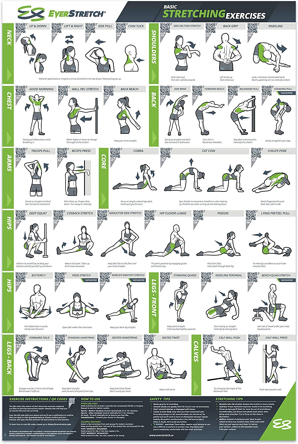 EverStretch Basic Stretching Poster for Home Gym - 24