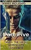 Taken: The Viking Werewolf's Concubine: Part Five