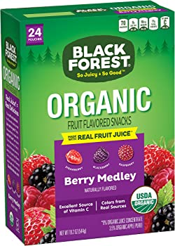 24-Count Black Forest Organic Fruit Snacks (Berry Medley)