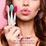 BlushLips A Double-Sided Silicone Exfoliating Soft Lip Brush Applicator Wand Tool for Plump Smoother Fuller Lip Appearance (Pink)