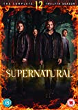 Supernatural: The Complete Twelfth Season [DVD] [2017]