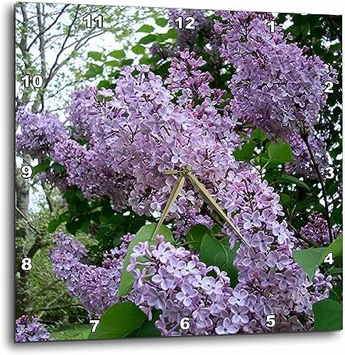 3dRose DPP_3139_3 Lilac Wall Clock, 15 by 15-Inch