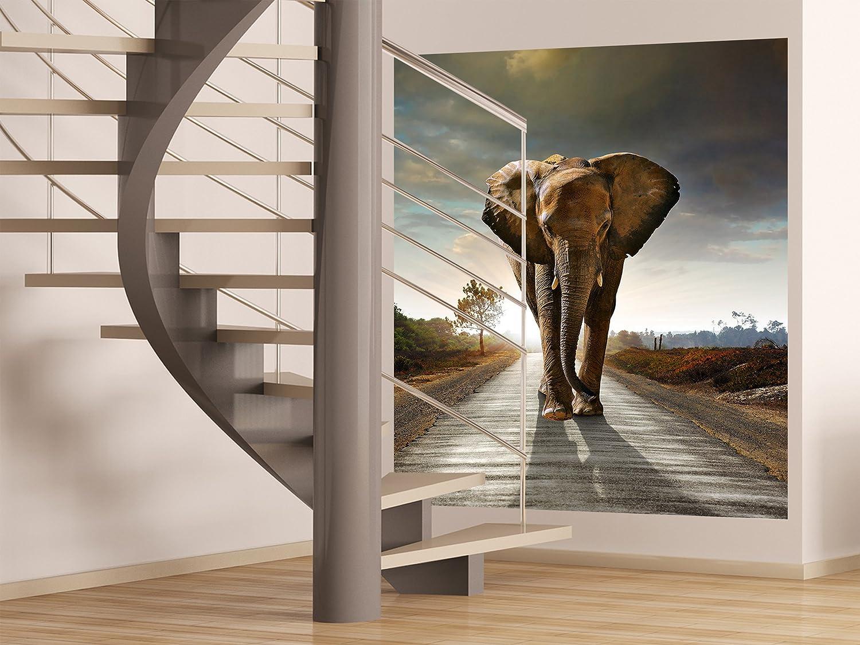 AG Design FTL 1614  Elefant, Papier Fototapete - 180x202 cm - 2 teile, Papier, multicolor, 0,1 x 180 x 202 cm
