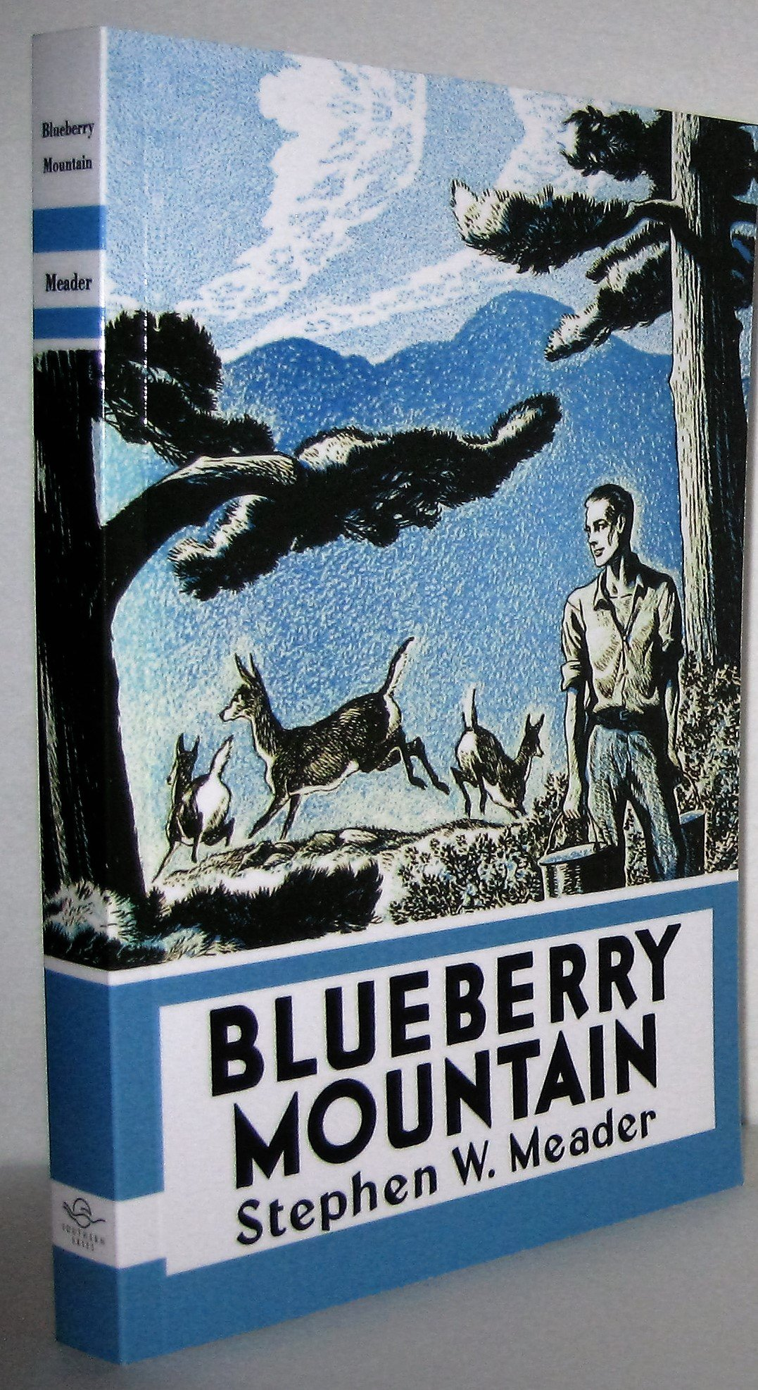 Blueberry Mountain: Stephen Meader: 9781931177306: Amazon.com: Books