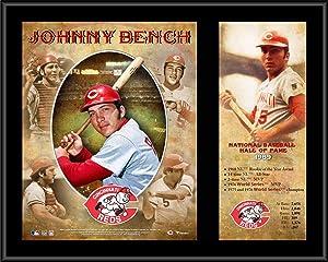 Johnny Bench Cincinnati Reds 12