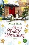 Die Winterüberraschung: Roman