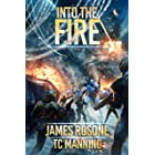 Into the Fire (Rise of the Republic Book 5)