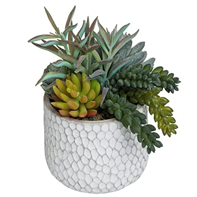MyGift 8-Inch Artificial Succulent Plant Arrangement in Dimpled Clay Planter: Kitchen & Dining