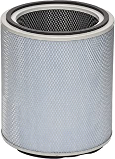 product image for Austin Air FR405B Allergy Machine Standard Replacement Filter, White