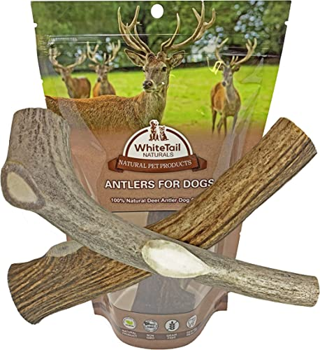 WhiteTail Naturals 2 Pack Large Deer Antlers for Dogs, All Natural Dog Chews Grade A Antler Chew Bones Crafted in USA